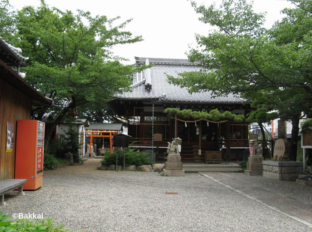 櫻井神社(尼崎)で嵐の聖地巡礼!御朱印やお守りについても!